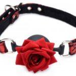Aufsehenerregender Ballknebel mit Rose